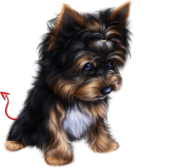 Sailor suit dog clipart graphic royalty free stock TUBE HALLOWEEN CHIEN | Dog 3D Tubes 1 | Pinterest graphic royalty free stock