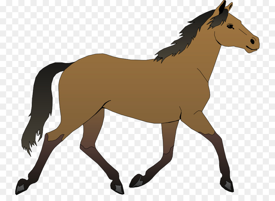 Friesian horse clipart svg library Animal Cartoontransparent png image & clipart free download svg library
