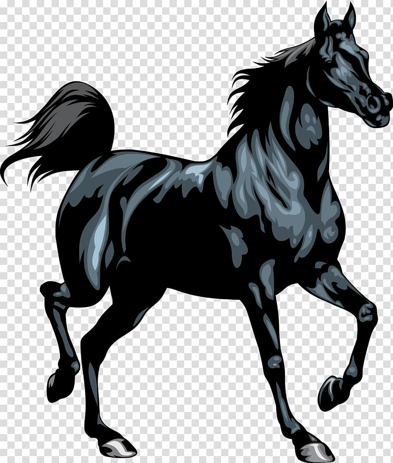 Friesian horse clipart banner stock Friesian horse Stallion Black , horseshoe transparent background PNG ... banner stock