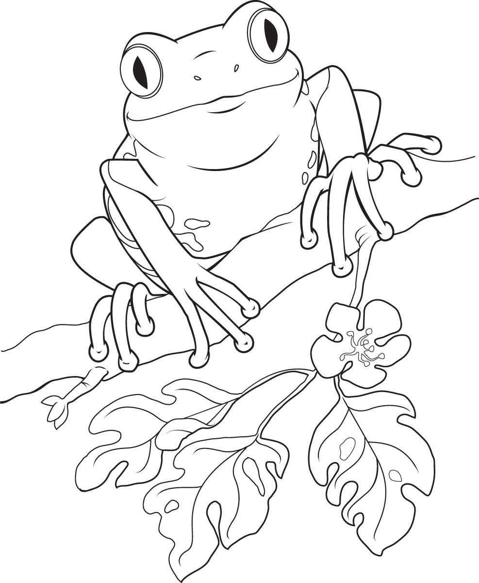 Frog and rose clipart black and white clip transparent Free Frog Line Cliparts, Download Free Clip Art, Free Clip Art on ... clip transparent