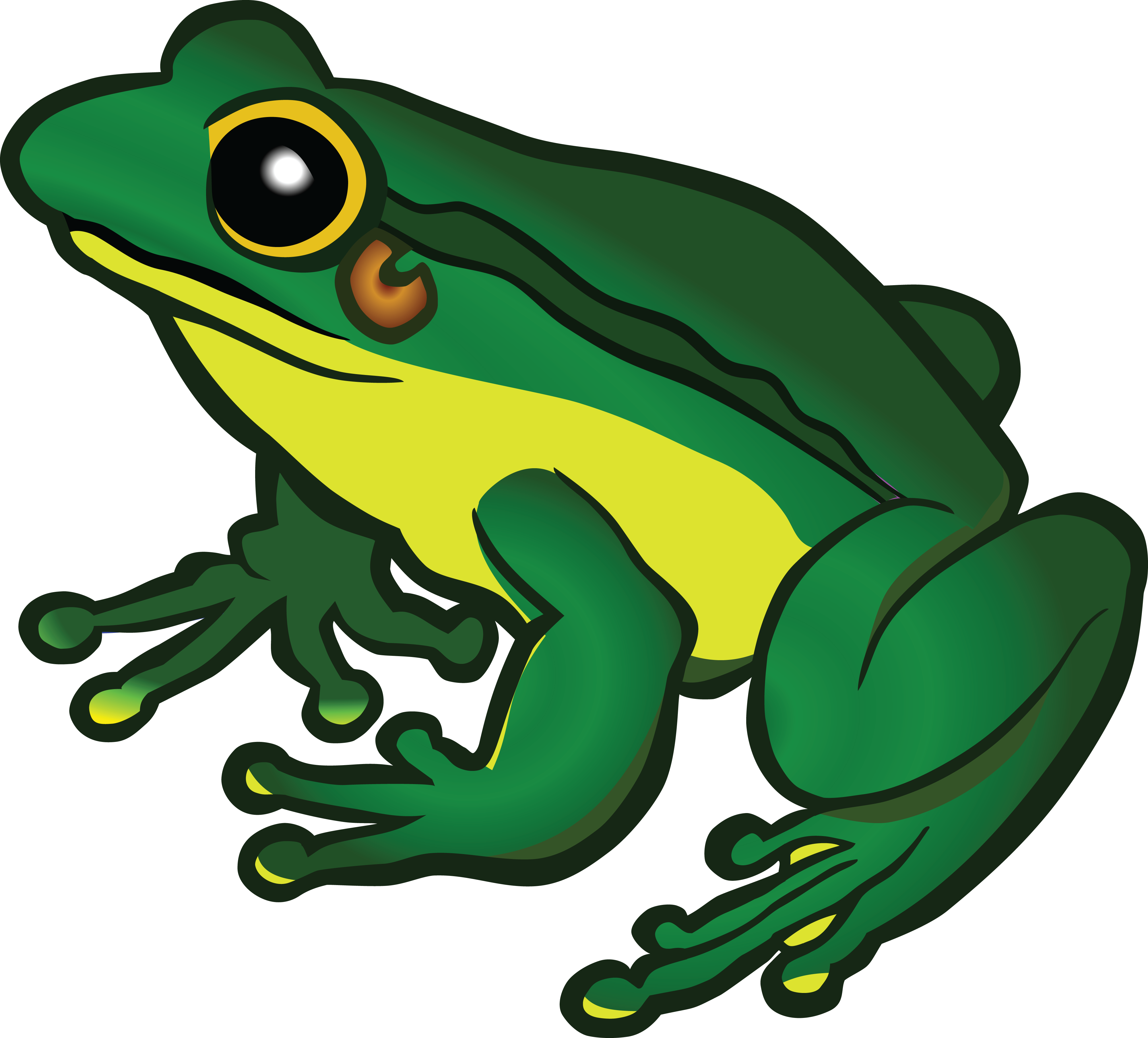 Frog in a crown clipart clip art library Free Clipart Of A frog | FROG CLIPART | Pinterest | Frogs clip art library