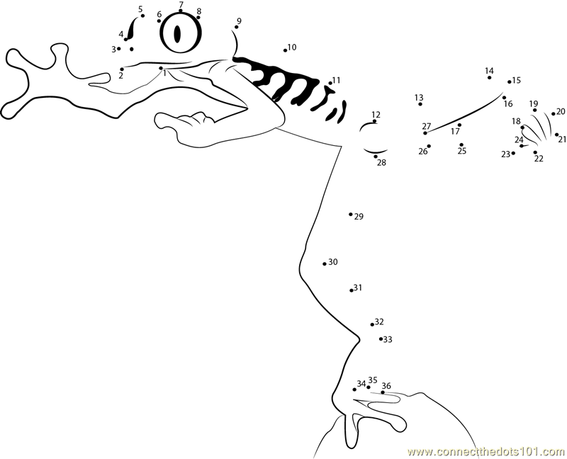 Frog jumping with dashed lines clipart banner black and white Free Frog Dot To Dot, Download Free Clip Art, Free Clip Art on ... banner black and white