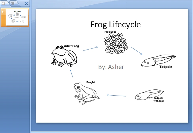 Frog life cycle clipart vector library download Frog Life Cycle PowerPoint | K-5 Computer Lab Technology Lessons vector library download