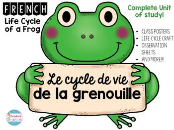 Frog observation clipart graphic royalty free download Le cycle de vie de la grenouille - Life Cycle of A Frog Complete Unit graphic royalty free download