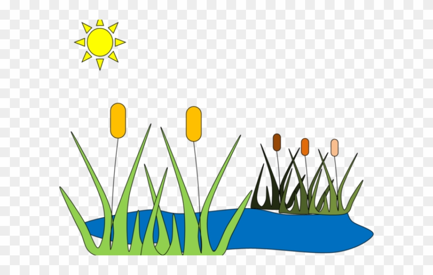 Frog pond clipart clip art library library Pond Clipart Frog House - Pond Grass Clip Art - Png Download ... clip art library library