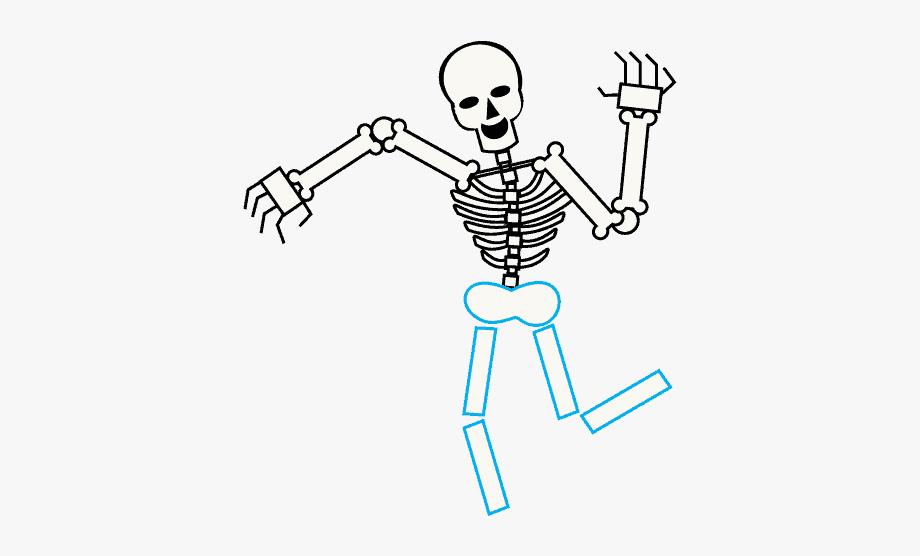 Frog skeleton clipart png freeuse stock How To Draw Skeleton - Skull Skeleton Transparent Background ... png freeuse stock