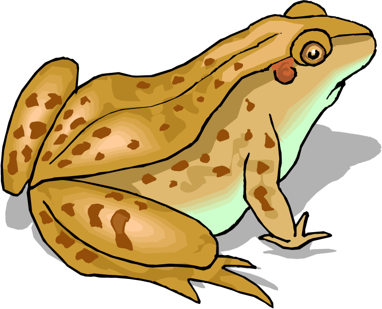 Red eyed tree frog clipart svg royalty free download Free Frog Clipart svg royalty free download