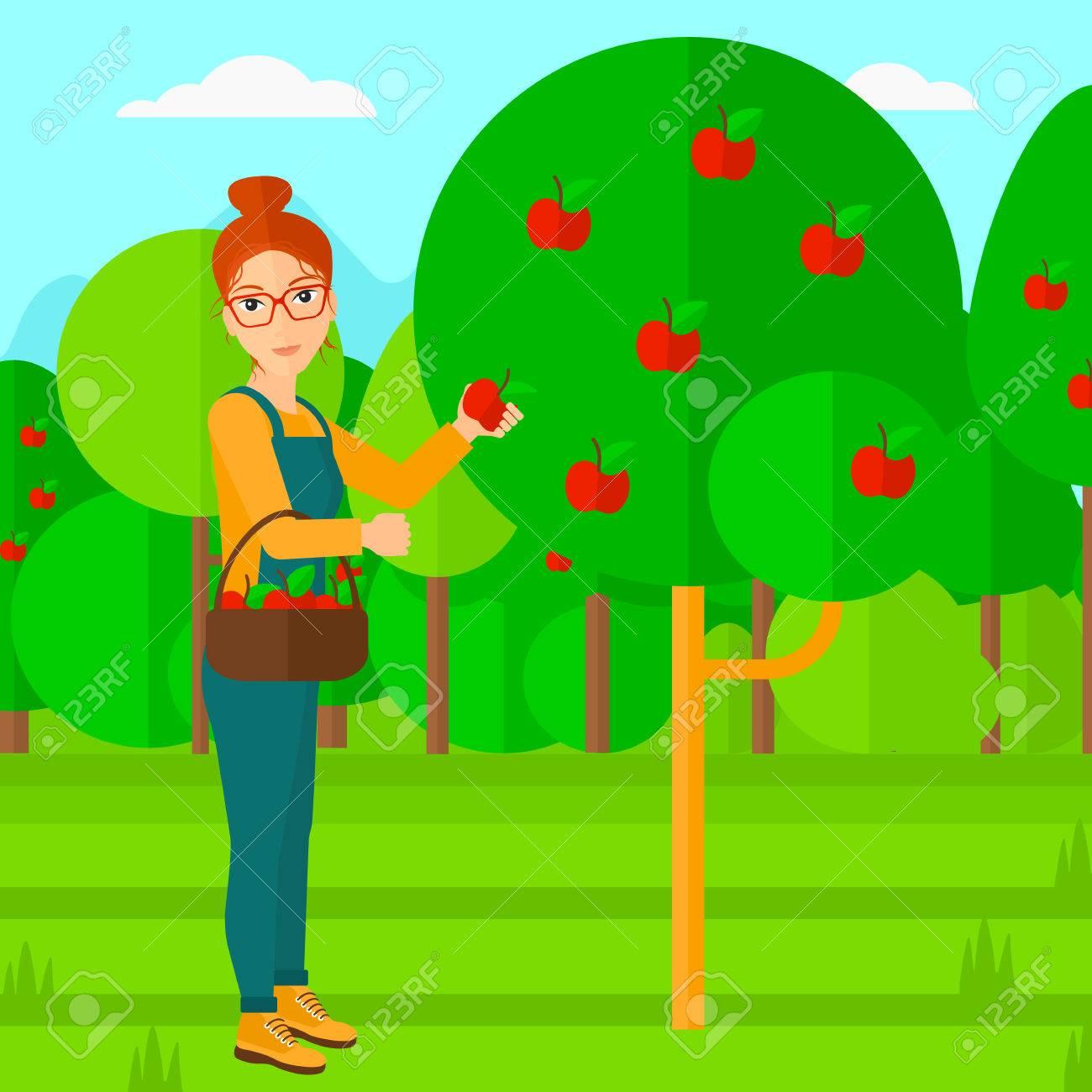 Fruit garden clipart jpg freeuse stock Fruit Garden Cliparts 15 - 1300 X 1300 - Making-The-Web.com jpg freeuse stock