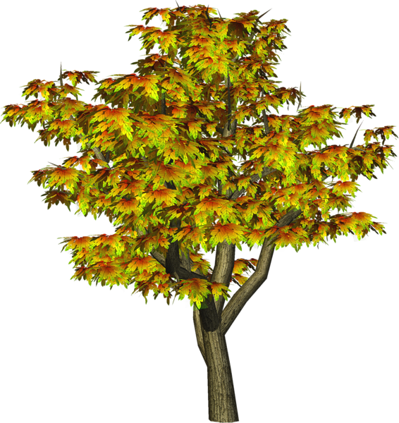 Png tree clipart graphic royalty free download Autumn Tree PNG Tree Clipart | Tree Art | Pinterest | Tree clipart ... graphic royalty free download