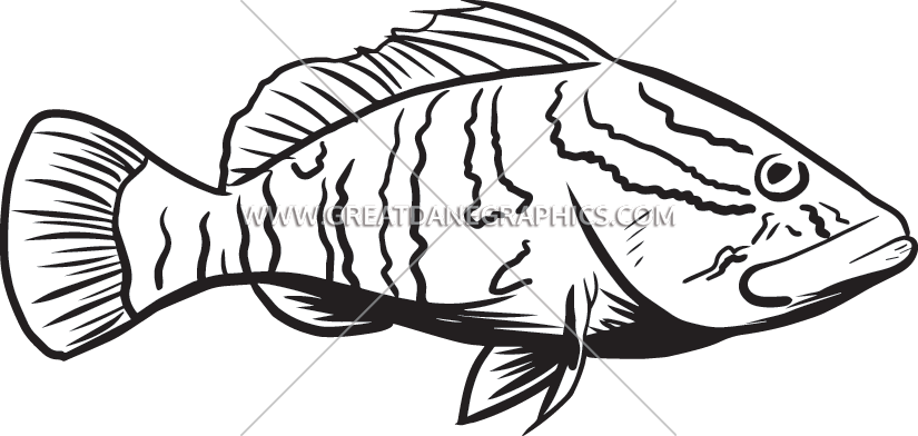 Grouper fish clipart clipart royalty free Funky Grouper   Production Ready Artwork for T-Shirt Printing clipart royalty free