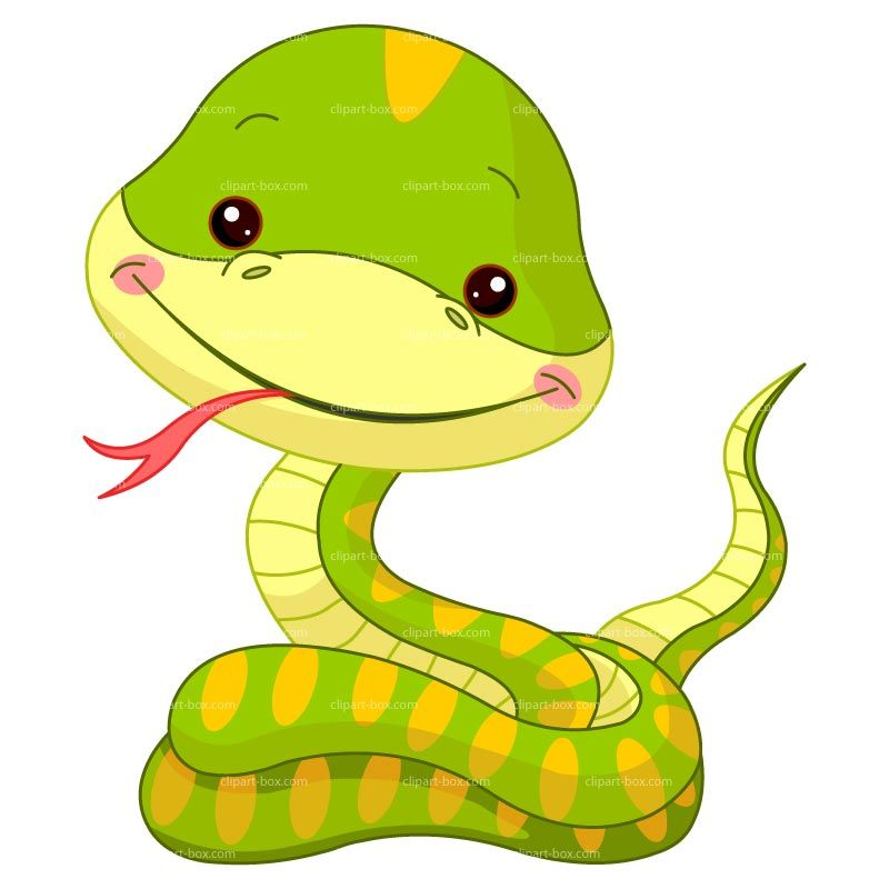 Snake cartoon clipart