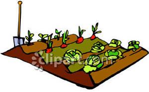 Garden row clipart jpg free Vegetable Garden Rows Clipart - Clipart Kid jpg free