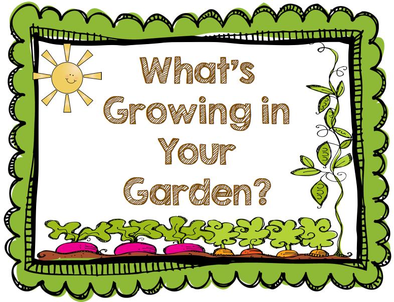 Garden row clipart freeuse download Garden row clipart vegetable - ClipartFest freeuse download