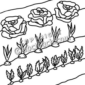 Garden row clipart png transparent stock Vegetable Garden Clipart - Clipart Kid png transparent stock