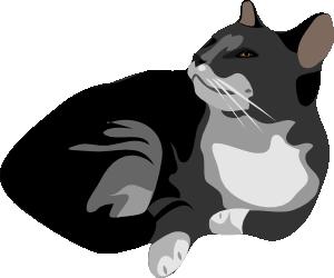 Gato clipart library Gatto Cat Clip Art at Clker.com - vector clip art online, royalty ... library
