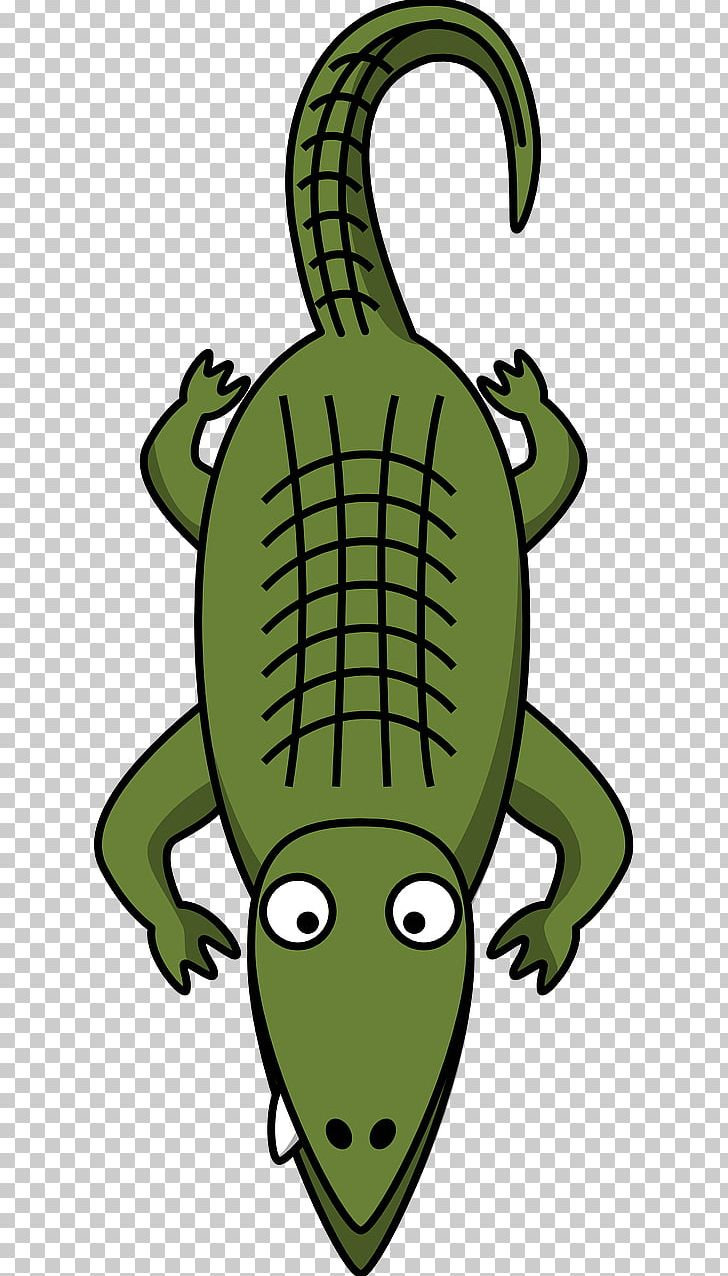 Gator in heartbeat clipart clip transparent library Alligator Crocodile Cartoon PNG, Clipart, Alligator, Amphibian ... clip transparent library