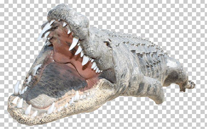 Gator in heartbeat clipart graphic free Crocodile Alligators Desktop PNG, Clipart, Alligato, Alligator ... graphic free