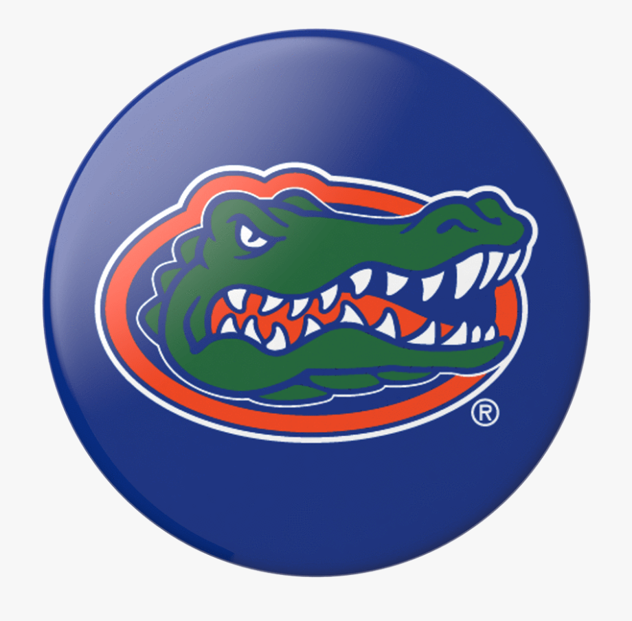 Gators clipart picture royalty free Florida Gators Basketball Logo #482135 - Free Cliparts on ClipartWiki picture royalty free