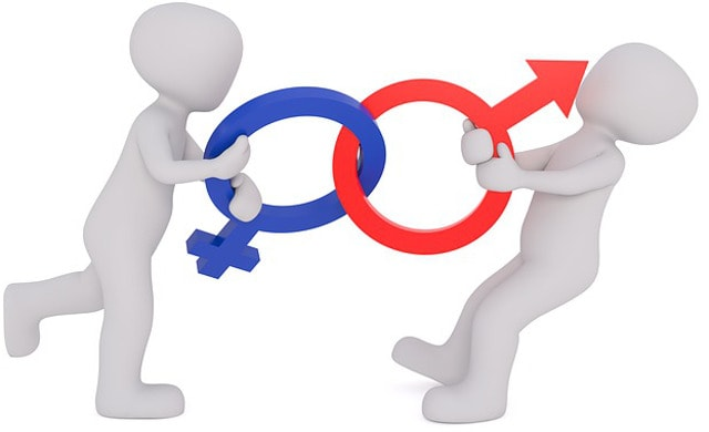 Gender identities clipart vector freeuse stock Gender Identity Disorder vector freeuse stock