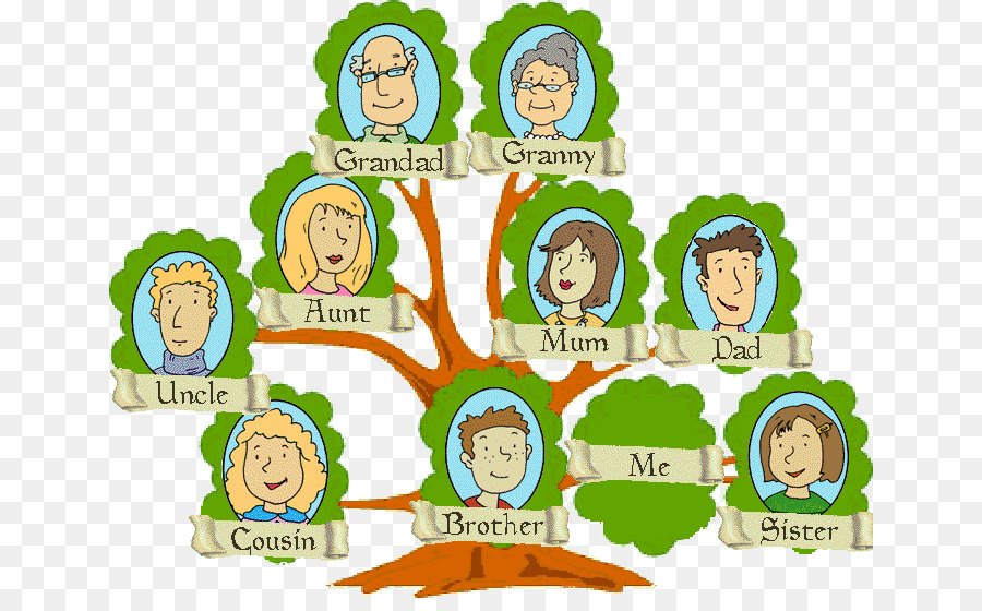 Genealogy clipart pictures freeuse library Family Tree Background clipart - Family, Communication, transparent ... freeuse library