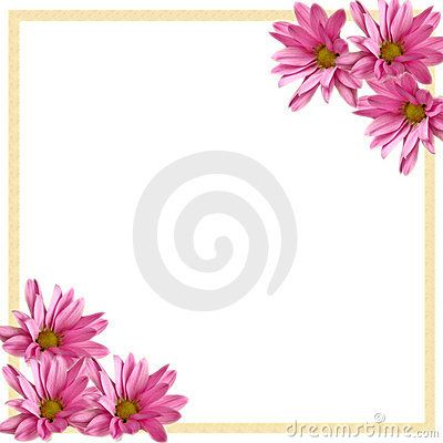 Gerber daisy border clipart vector transparent Pin by ginger on Boarders And Frames | Flower border clipart, Daisy ... vector transparent