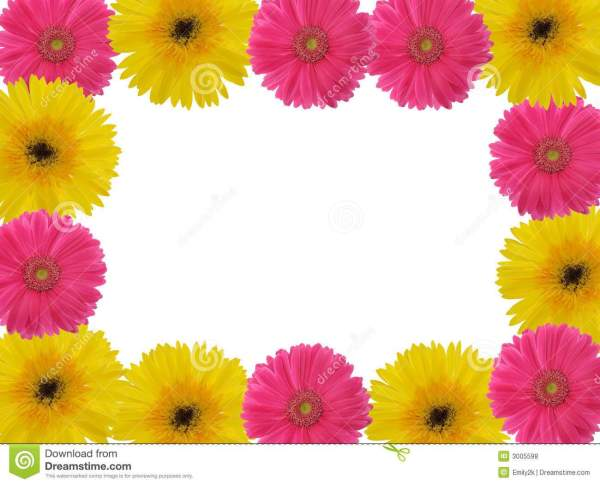 Gerber daisy border clipart clipart library download Pink Gerbera Daisies Flowers Clip Art Borders - Year of Clean Water clipart library download