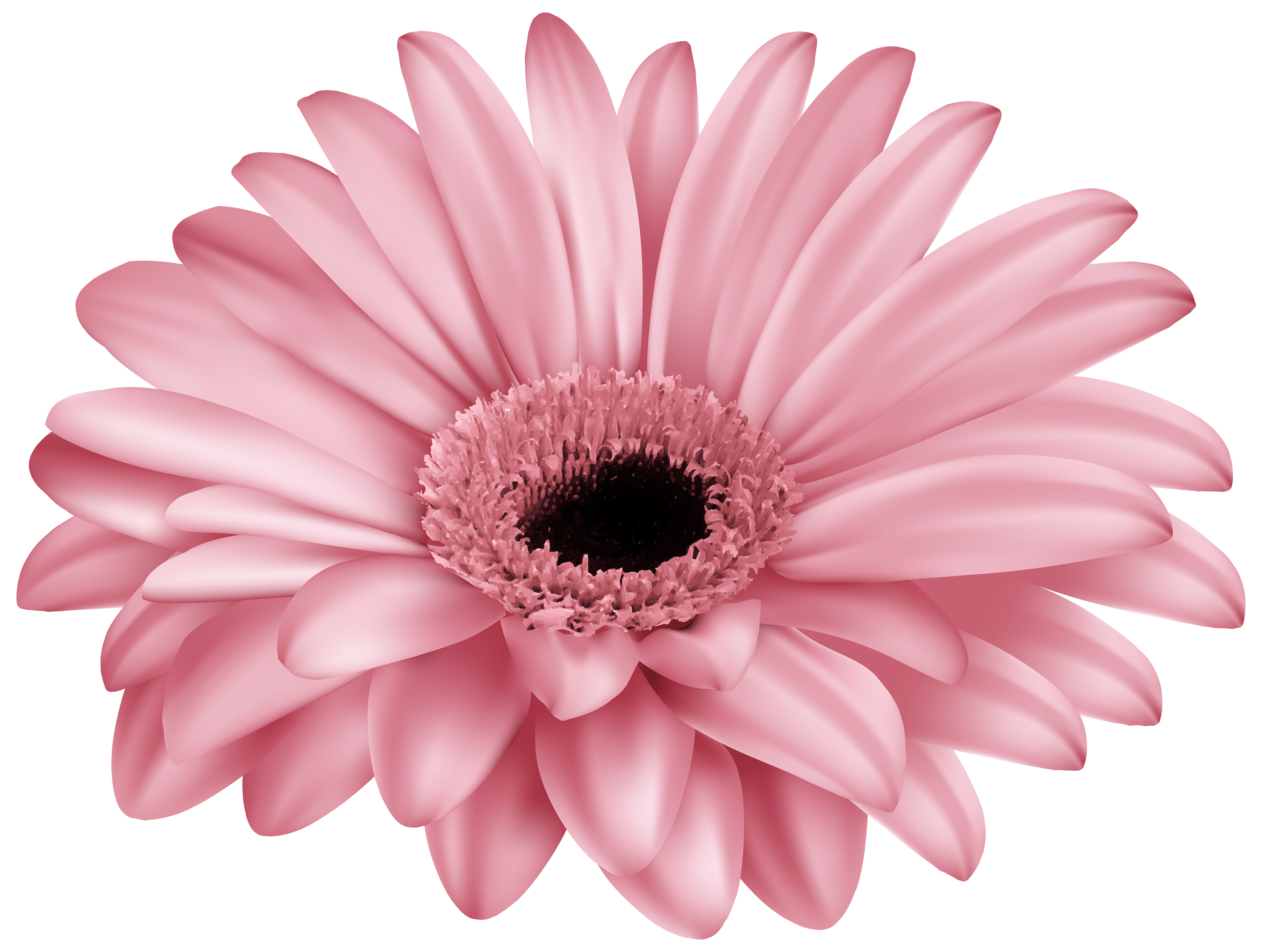 Gerber logo clipart vector freeuse download Pink Gerber PNG Clip Art Image | Gallery Yopriceville - High ... vector freeuse download