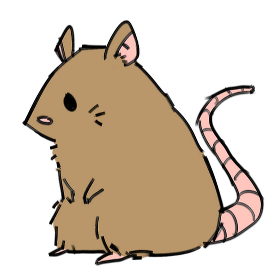 Gerbil clipart png royalty free Gerbil Clipart | Free download best Gerbil Clipart on ClipArtMag.com png royalty free