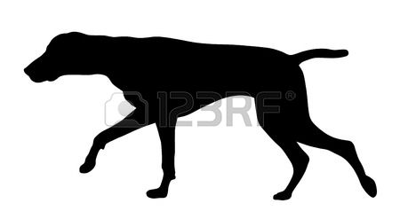 German longhaired pointer clipart svg stock 1,079 Pointer Dog Stock Vector Illustration And Royalty Free ... svg stock