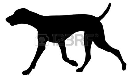 German longhaired pointer clipart clip black and white stock 1,079 Pointer Dog Stock Vector Illustration And Royalty Free ... clip black and white stock