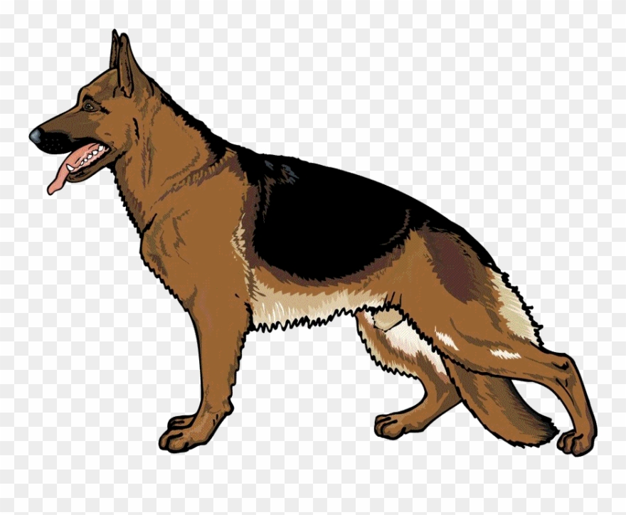 German shepherd clipart clip art royalty free German Shepherd Png - Clip Art German Shepherd Transparent Png ... clip art royalty free