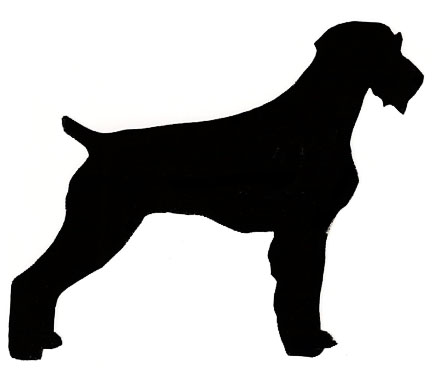 German wirehaired pointer clipart clipart free stock Collie - Great Pyrenees clipart free stock