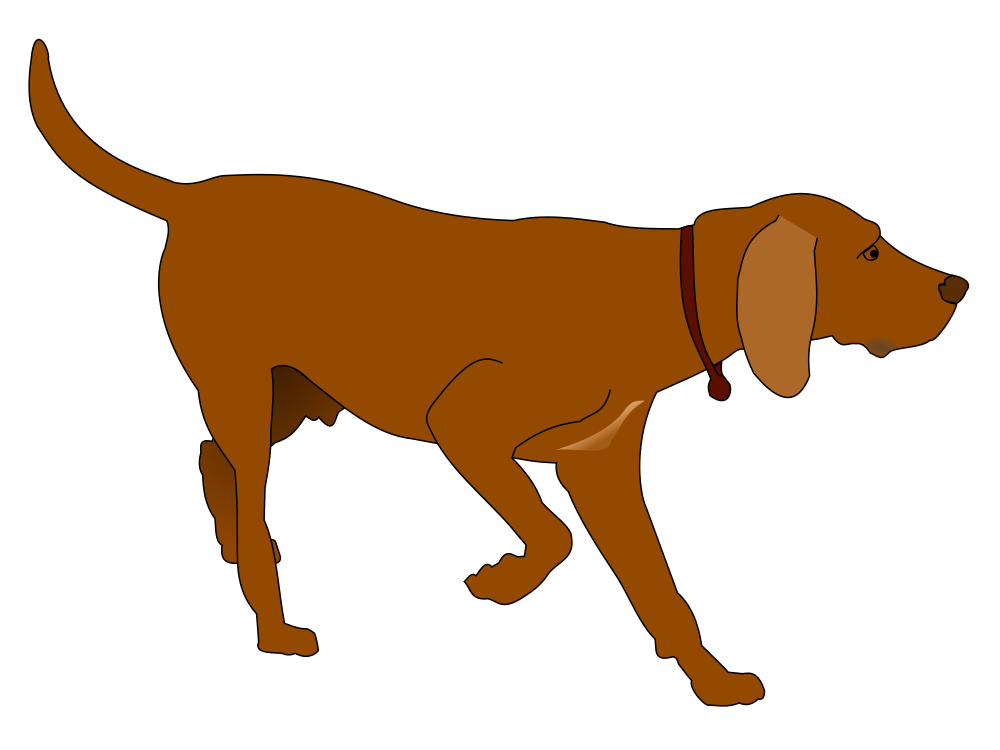 Pointer clipart library German Shorthaired Pointer Clipart at GetDrawings.com | Free for ... library