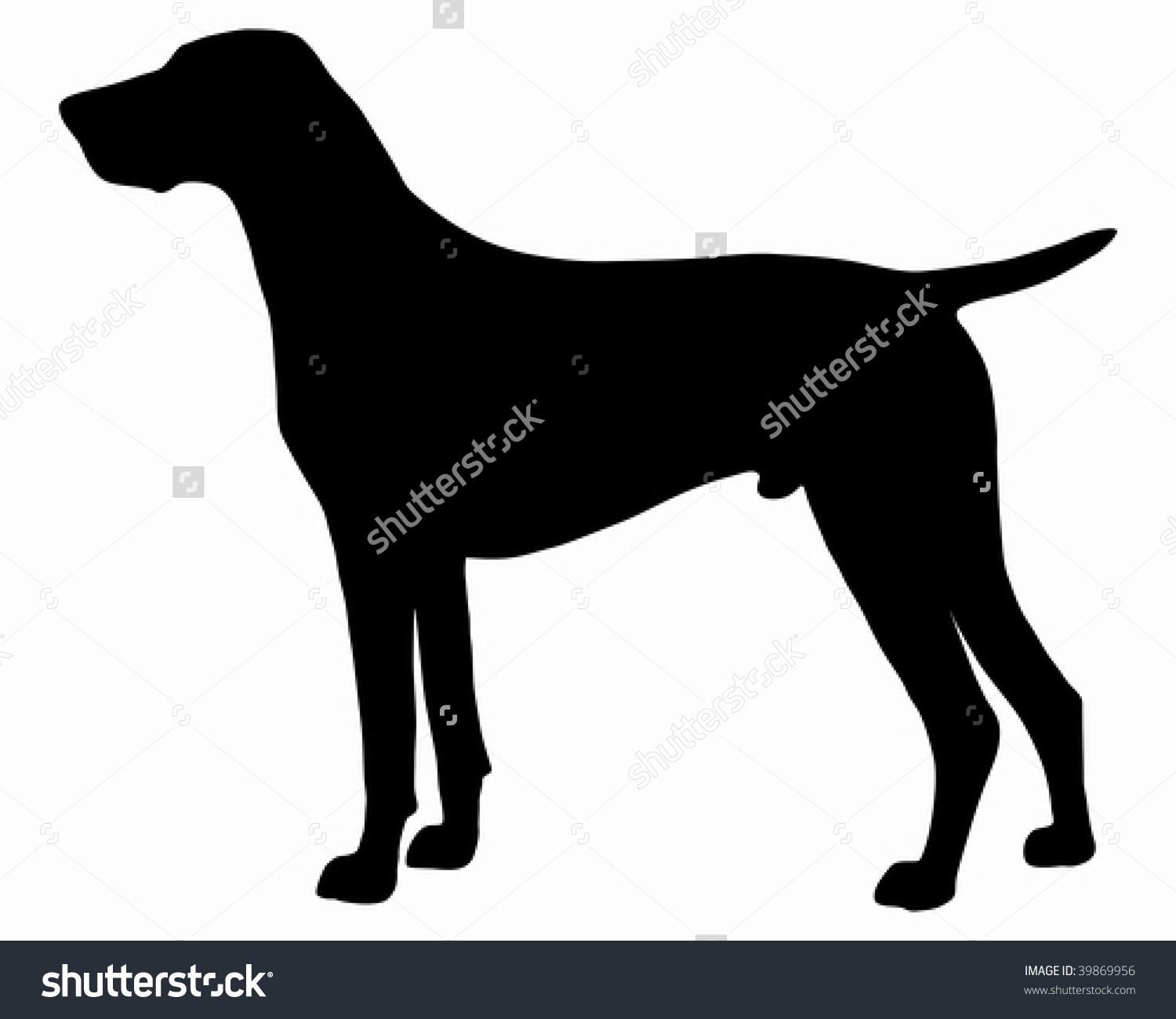 German wirehaired pointer clipart transparent library Black Silhouette German Shorthaired Pointer Stock Vector 39869956 ... transparent library
