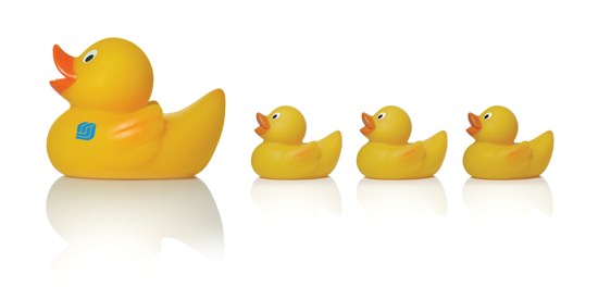 Get your ducks all in a row clipart jpg royalty free library PNG Ducks In A Row Transparent Ducks In A Row.PNG Images.   PlusPNG jpg royalty free library