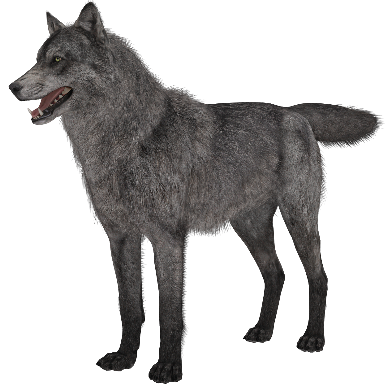 Ghost dog clipart jpg Transparent Wolf PNG Picture   Gallery Yopriceville - High-Quality ... jpg