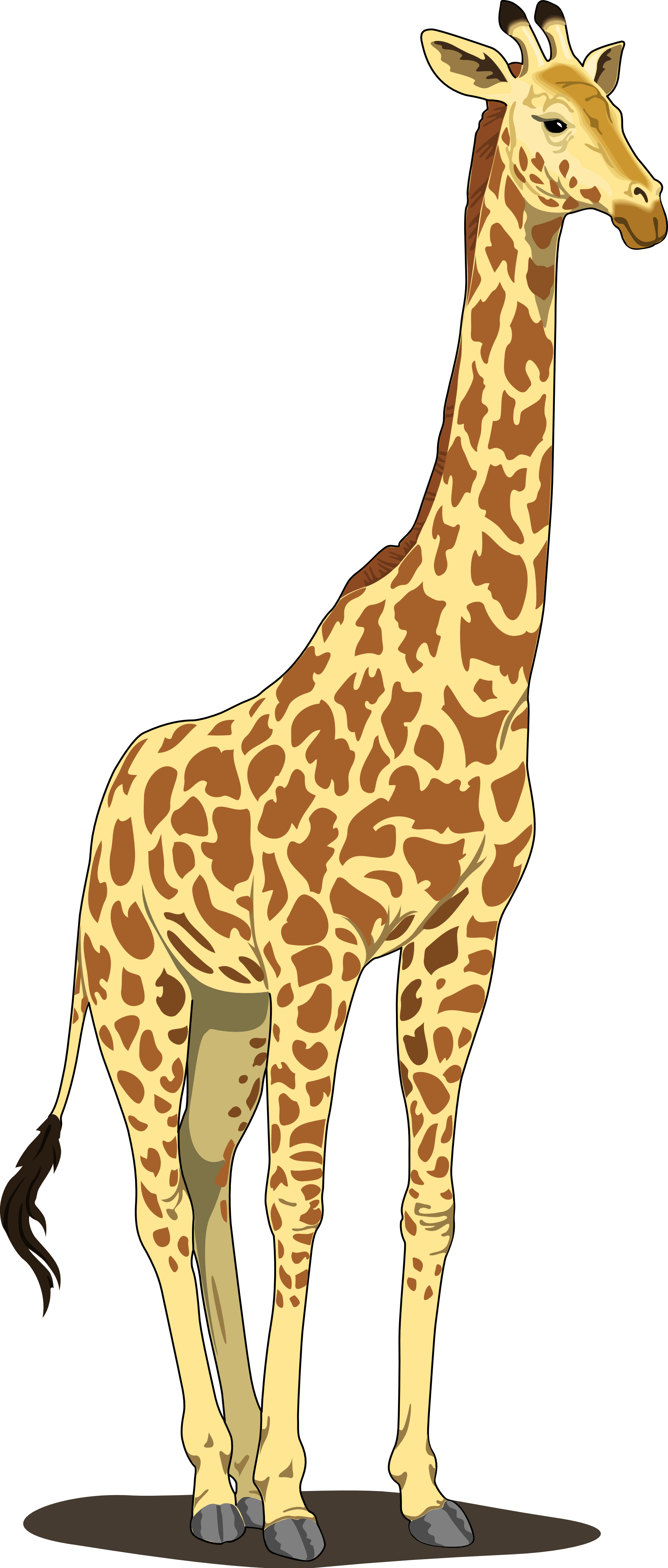 Giraffe clipart png jpg royalty free library Giraffe PNG Transparent Images   PNG All jpg royalty free library