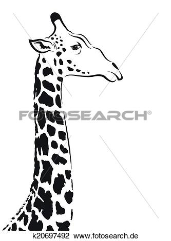 Giraffe kopf clipart svg royalty free download Clipart - vektor, bild, von, ein, giraffe, kopf k20697492 - Suche ... svg royalty free download