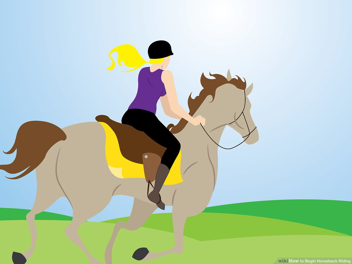 Girl riding a horse in the distance clipart image transparent 3 Easy Ways to Begin Horseback Riding (with Pictures) image transparent