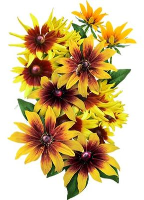 Gloriosa daisy clipart clip art freeuse download Gloriosa Daisy Seeds (Rudbeckia Gloriosa) clip art freeuse download