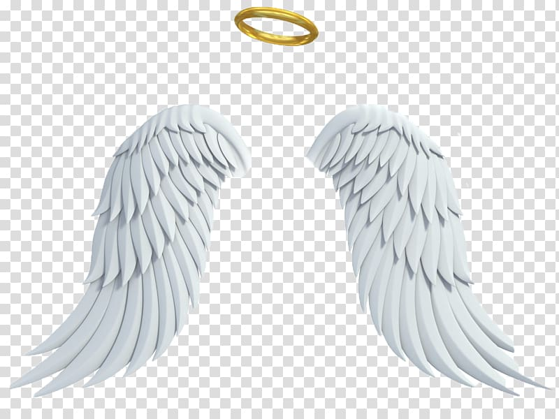 Glowing halo clipart banner library library Angel wings and halo illustration, Gabriel Angel Drawing , glowing ... banner library library
