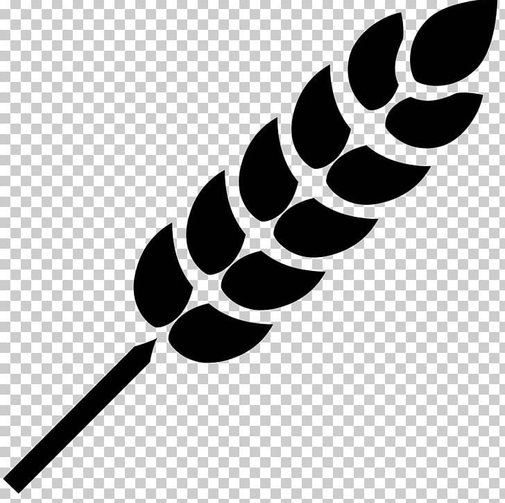 Gluten clipart picture download Computer Icons Wheat Allergy Gluten-free Diet PNG, Clipart, Black ... picture download