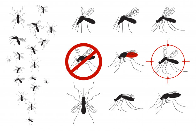 Gnats clipart banner Mosquitoes and gnats vector set Vector | Premium Download banner