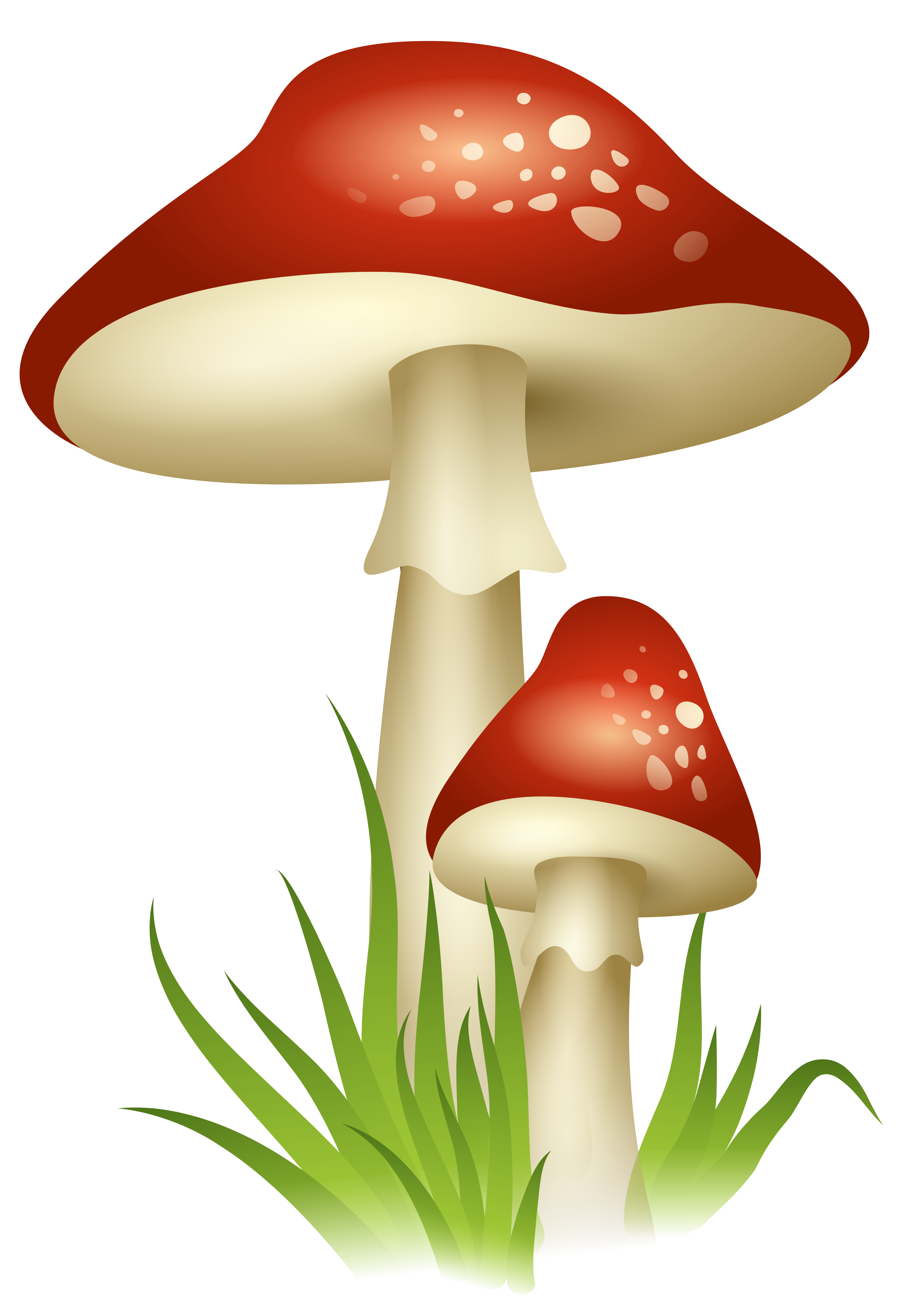 Troll house clipart clip art transparent library Mushrooms Transparent Png Picture Free Download | Free pictures ... clip art transparent library