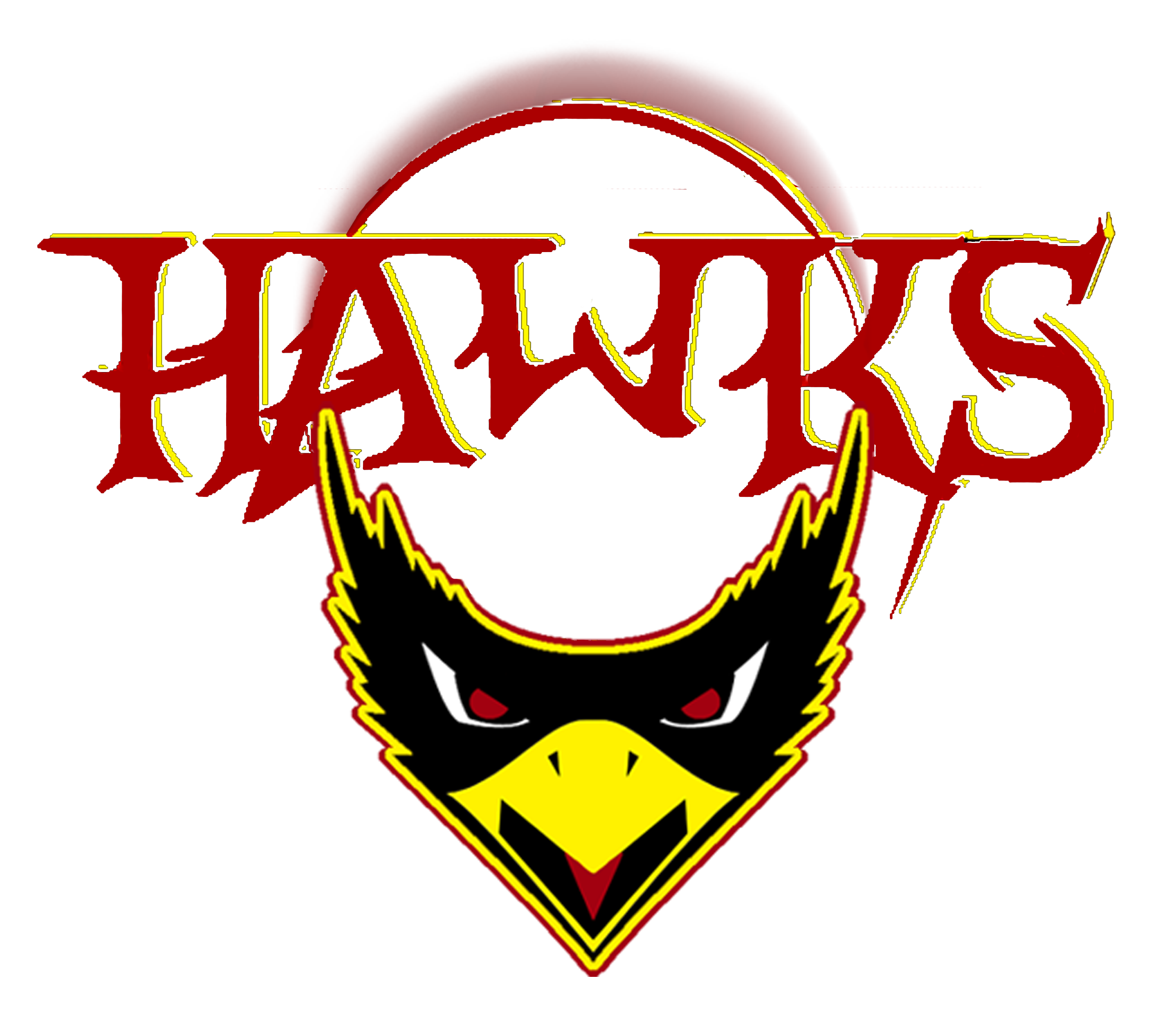 Hawk football clipart svg black and white download Bergen Hawks 2009 (BNEFF) Semi-Pro/Minor League Football Champs ... svg black and white download