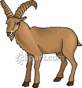Goat horn clipart image transparent Goat With Big Horns - Royalty Free Clipart Picture image transparent