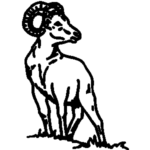 Goat mascots football clipart black and white