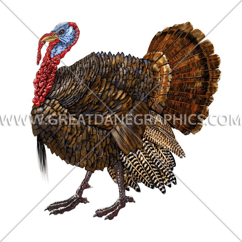 Gobbling turkey clipart with sound download Gobbler | Production Ready Artwork for T-Shirt Printing download