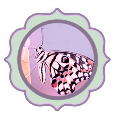 Goddess butterfly clipart picture freeuse download Free PNG Images & Free Vectors Graphics PSD Files - DLPNG.com picture freeuse download