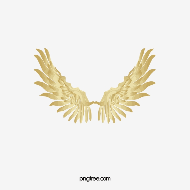 Gold Wings, Wings Clipart, Wing, Feather PNG Transparent Clipart ... clip black and white
